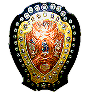 The IFA Shield