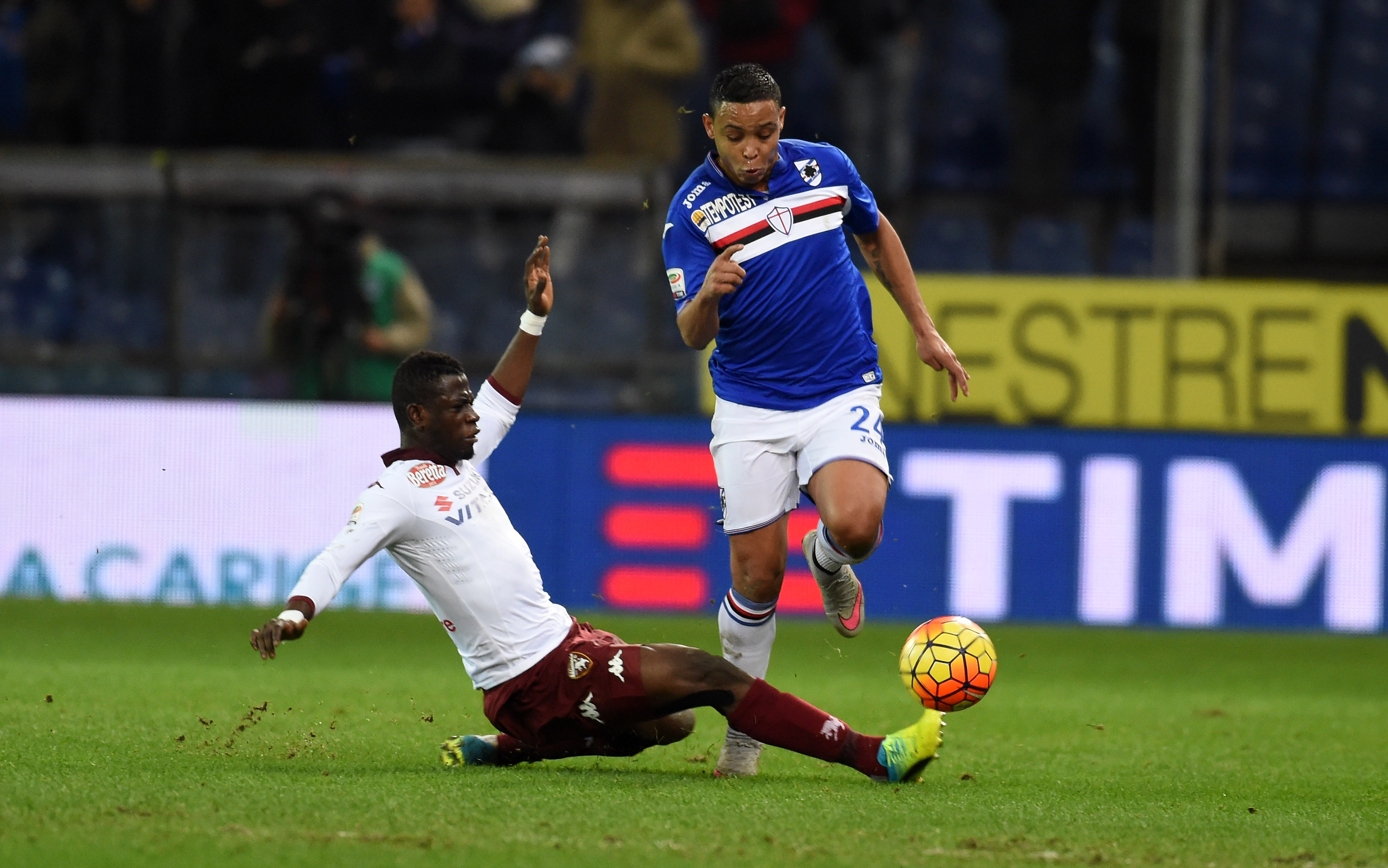 GENOA, ITALY - FEBRUARY 03: Afryie Acquah of Torino FC competes for the ball with Luis Muriel of UC Sampdoria during the Serie A match between UC Sampdoria and Torino FC at Stadio Luigi Ferraris on February 3, 2016 in Genoa, Italy. (Photo by Pier Marco Tacca/Getty Images)