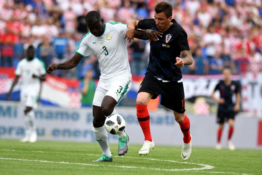 Kalidou Koulibaly (L) - The wall in the Senegalese defence (Photo: DENIS LOVROVIC/AFP/Getty Images)