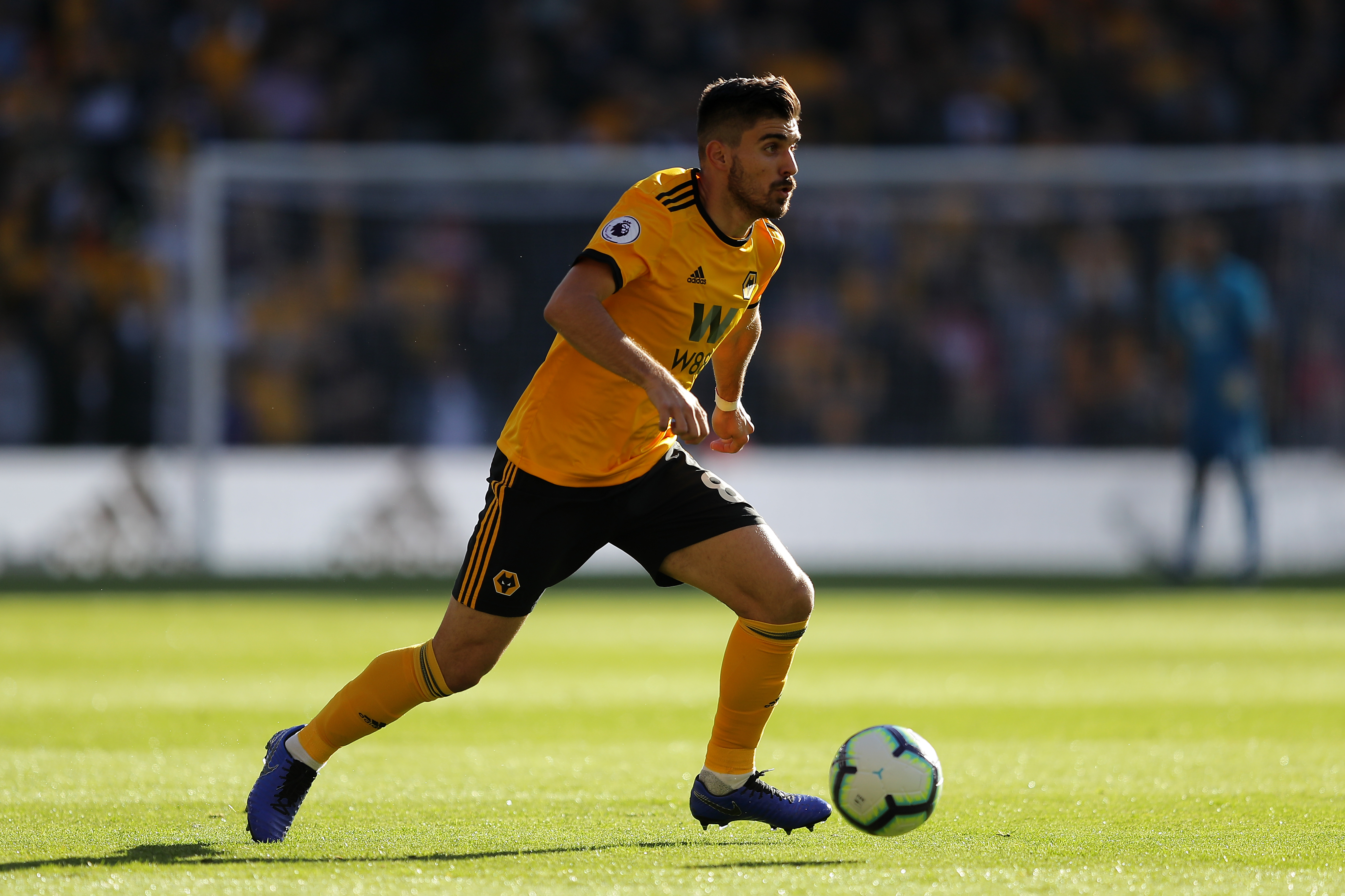 Ruben Neves will stay at Wolves this season. (Photo by Richard Heathcote/Getty Images)