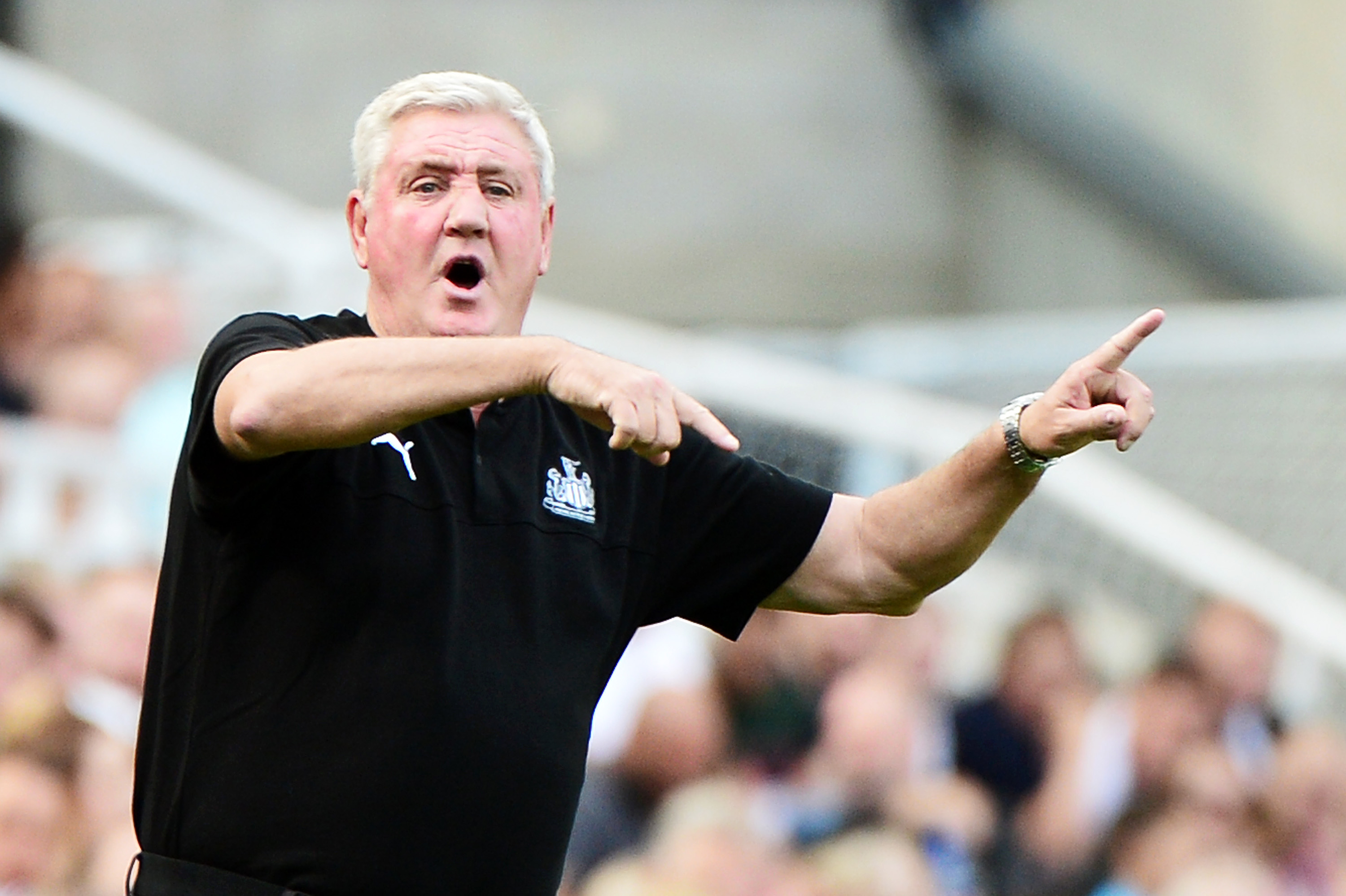 Steve Bruce is under pressure after recent results (Photo by Mark Runnacles/Getty Images)