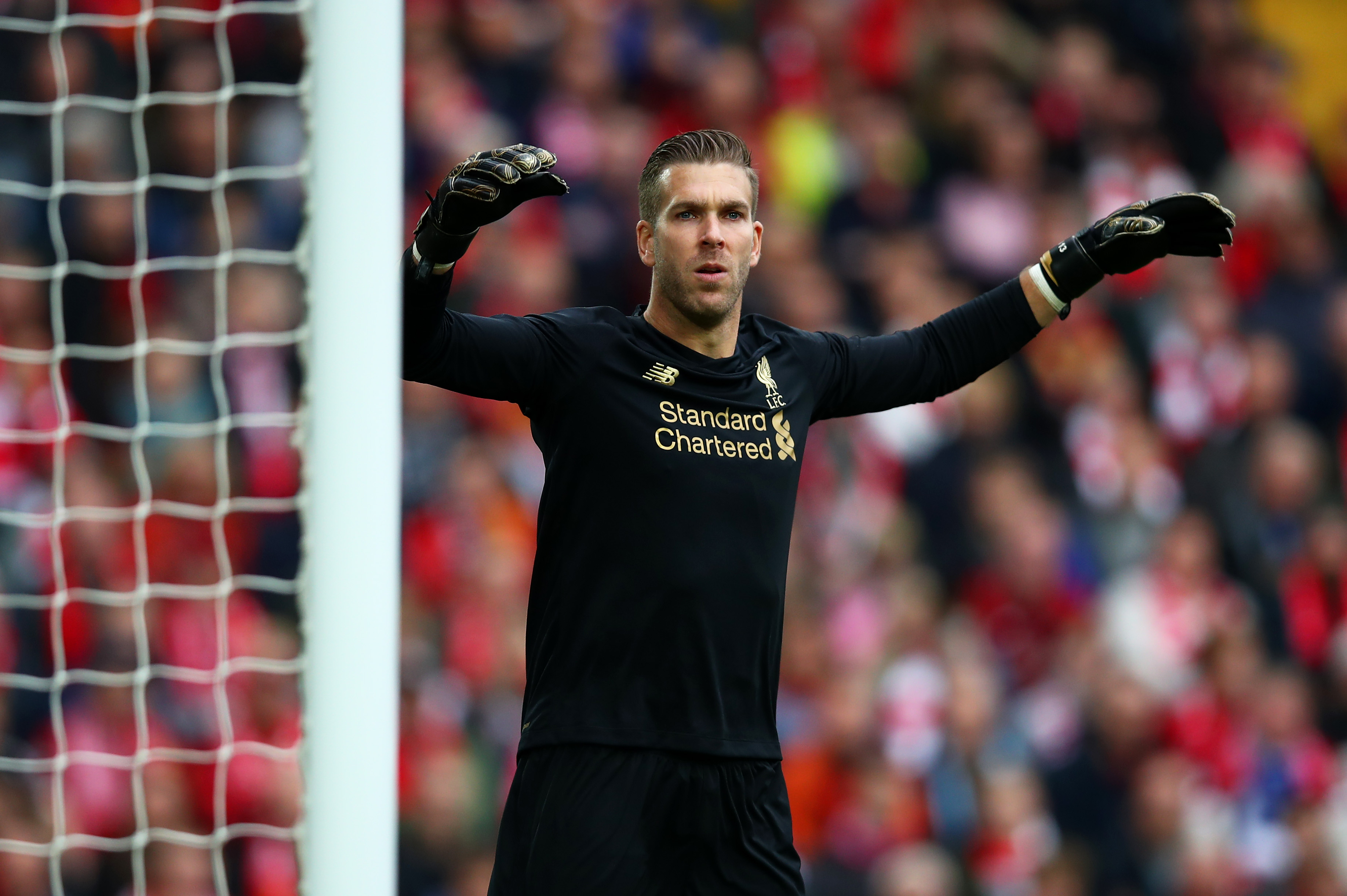 Adrian has struggled at Liverpool (Photo by Clive Brunskill/Getty Images)