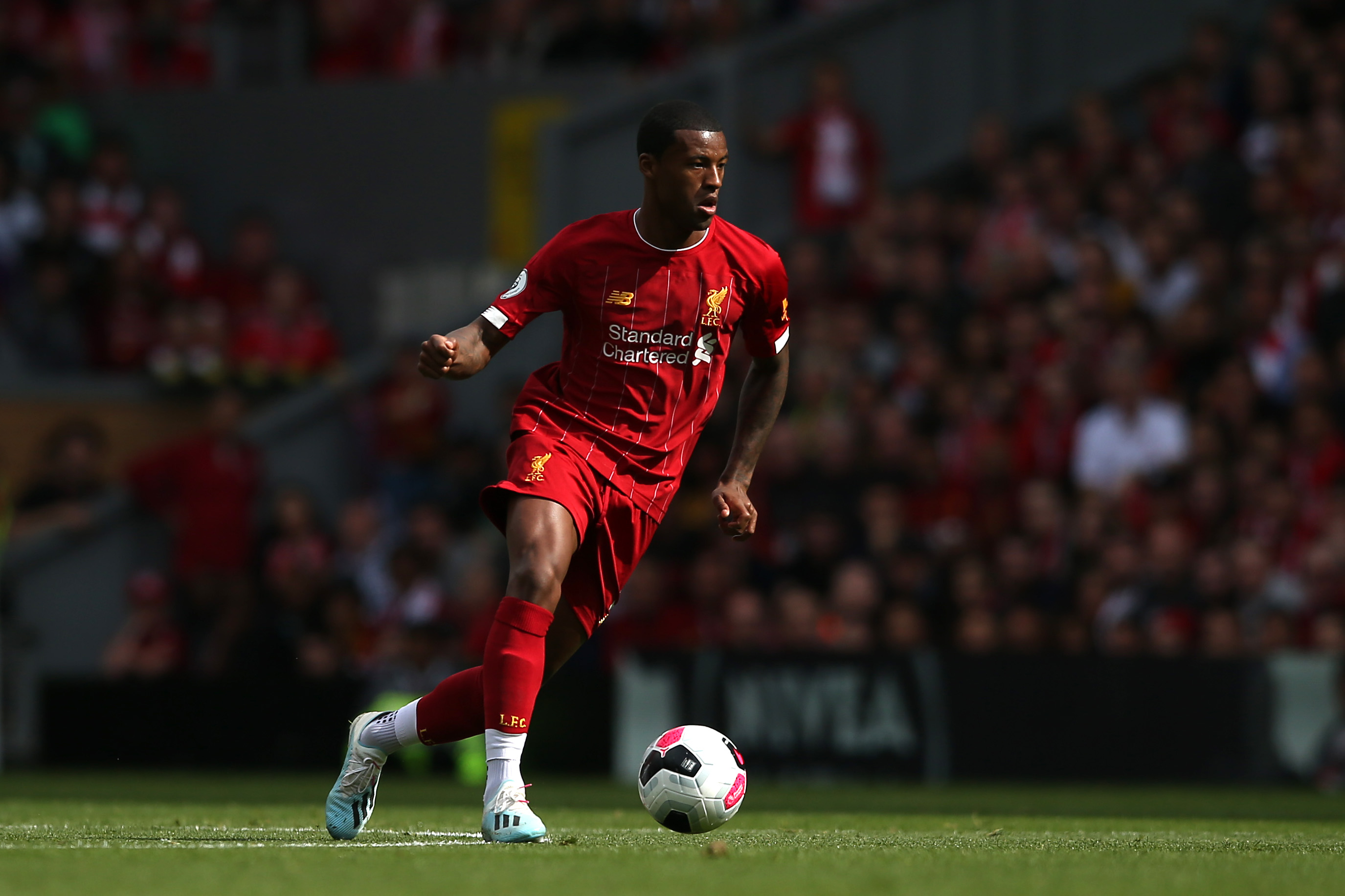 What does the future have in store for Wijnaldum? (Photo by Jan Kruger/Getty Images)
